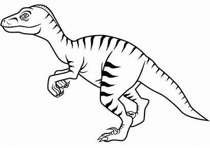 Dinosaur Coloring Velociraptor Printable Raptor Printcolorcraft Scary