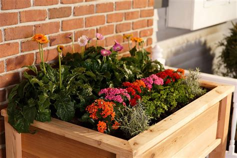 garden planter boxes elevated garden planter boxes yardcraft
