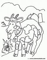 Coloring Goat Billy Pages Popular sketch template