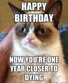 birthday cat meme happy birthday cat meme cat planet cat planet