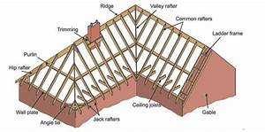 The Ultimate Roof And Rafter Guide For Cabins  U0026 Tiny Homes