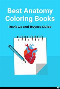 7 Best Anatomy Coloring Books For Purchase  Reviews And
