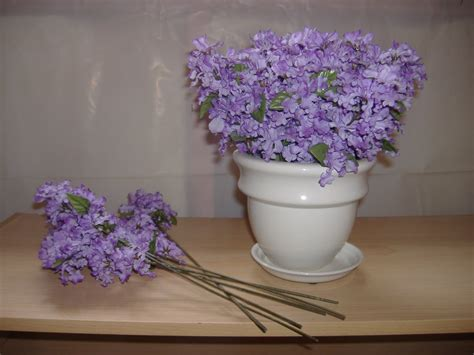 picture of a flower pot flower pot pictures beautiful flowers