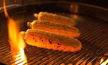 Grilled Vegetables Grilling Corn Grill Fire Kingsford
