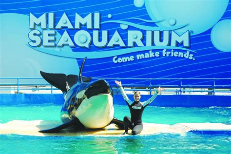 miami seaquarium with transportation