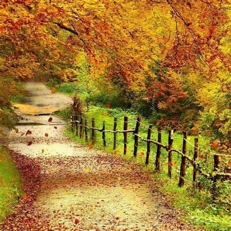 10 top beautiful sceneries wallpapers for desktop hd
