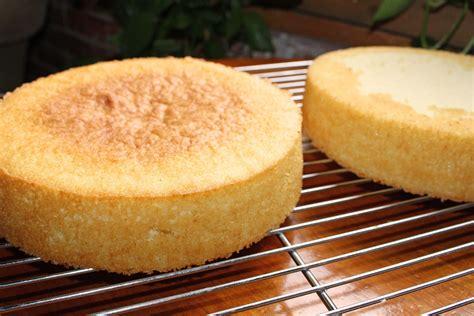 vanilla sponge cake recipe   hundreds