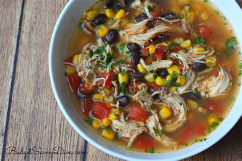 the best chicken soup recipe budget savvy - The Best Chicken Soup Ever
