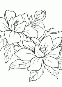 flowering tree coloring pages  kids printable  coloing kidscom