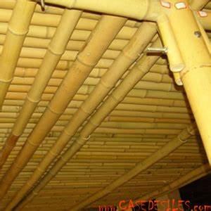 Baton De Bambou : b tons de bambou lot 10 tiges bambou d4 ~ Premium-room.com Idées de Décoration