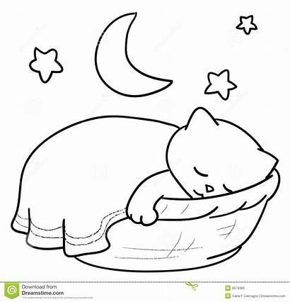 Sleeping Cat Clipart Sleep Basket Inside Vector