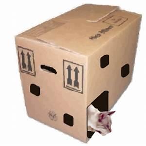 Katzenspielzeug Selber Machen Karton : katzenspielzeug selber basteln ~ Frokenaadalensverden.com Haus und Dekorationen