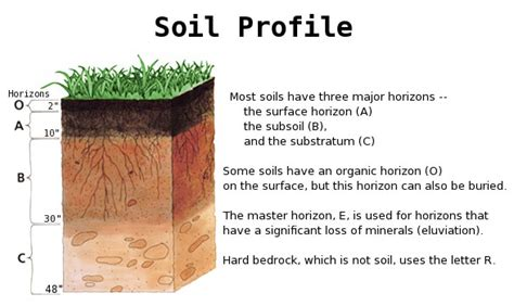 Soil Profile Horizons Geography Features
