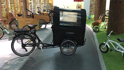 Electric 3 Wheel Adult Cargo Bike/denmark Cargo Tricycle