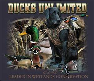Ducks Unlimited T-Shirt Camo Lab Hunding Dog Ducks NWT | eBay