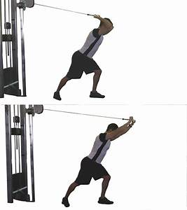 What Are The Best Tricep Exercises    Fitness