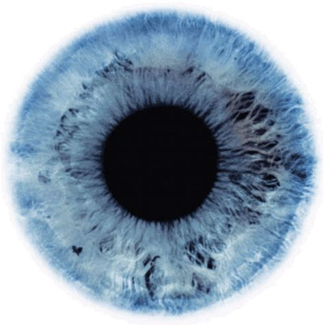 how to determine eye color supposedly your eye color can determine how much you