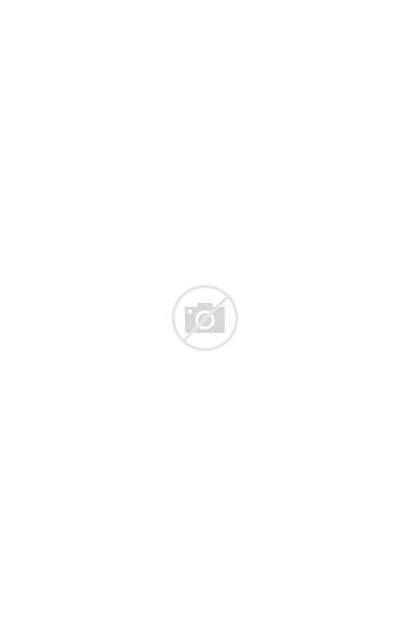 Trump Donald Blitt Cartoons Twelve Ways Yorker