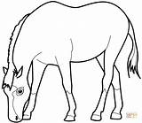 Coloring Horse Eating Grass Pages Drawing Printable Paper sketch template