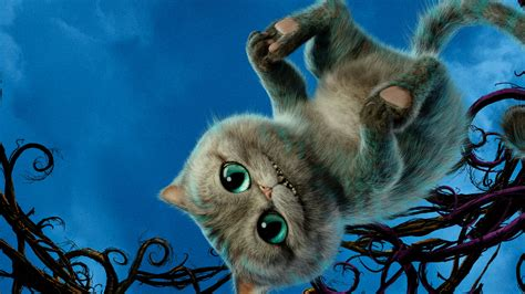 wallpaper cheshire cat alice    glass