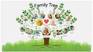 Microsoft Office Organizational Chart Template Family Tree