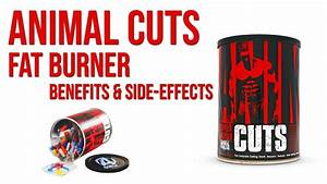 Animal Cuts Fat Burner Review - Benefits  U0026 Side Effects