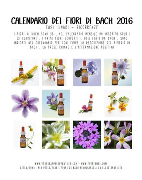 fiori di bach costi calendario 2016 fiori di bach verticale vivere a