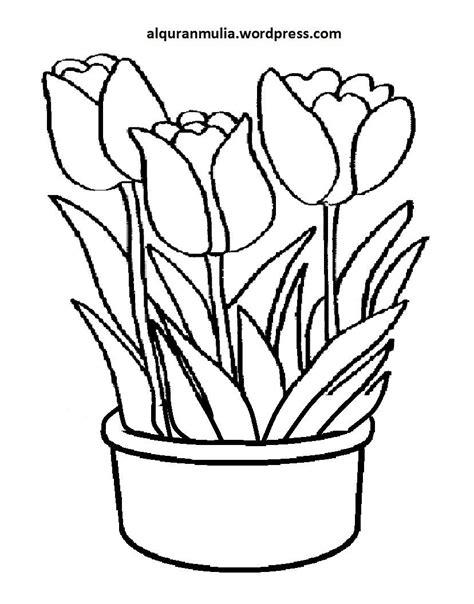 mewarnai gambar bunga semburat warna