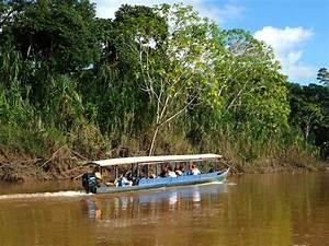 Tour 4d  3n Reserva Nacional Tambopata  Selva Y Aventura