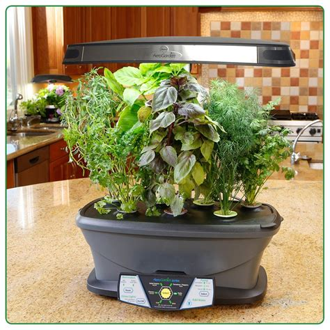 herb garden indoor aerogarden led smart hydroponic indoor gardens plant