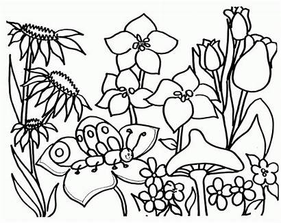Coloring Garden Flower Popular