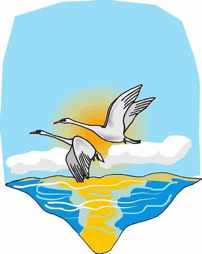 Sea Clip Clipart Flying Vector Geese Flight