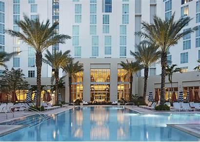 Palm West Hilton Pool Florida Hotels Fl