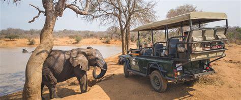 Safari Etiquette - ADORE Africa