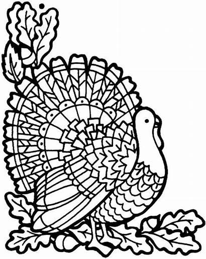 Coloring Thanksgiving Pages Turkey November Printable Sheets