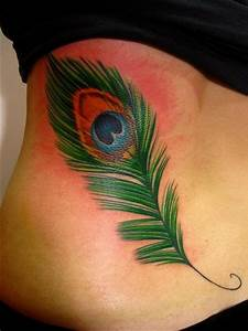Single Peacock Feather Tattoo | www.pixshark.com - Images ...