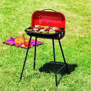 Petit Barbecue A Gaz : barbecue charbon bois holliday grill ~ Dailycaller-alerts.com Idées de Décoration