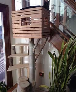 Maison Pour Chat Extérieur : arbre a chat maison avie home ~ Premium-room.com Idées de Décoration