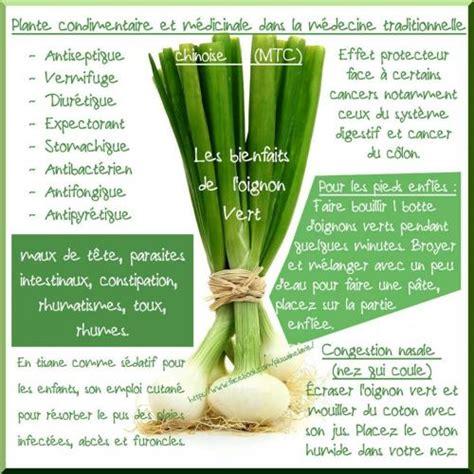 cuisine de comptoir oignon vert