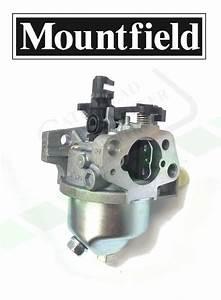 Mountfield  Ggp  Rm45    Rm55    St55 Carburettor