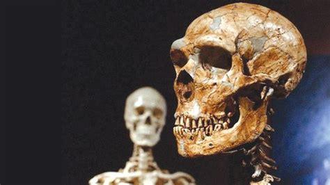 Ancient Human Sub-species Interbred, According To Study