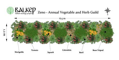balkan ecology project  polyculture market garden