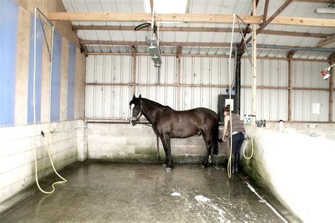 equine shower holidays peak district cheshire magpie cottages