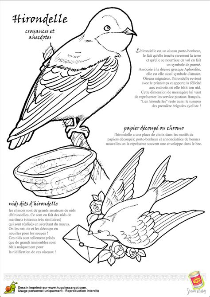 coloriage oiseau legende hirondelle sur hugolescargotcom