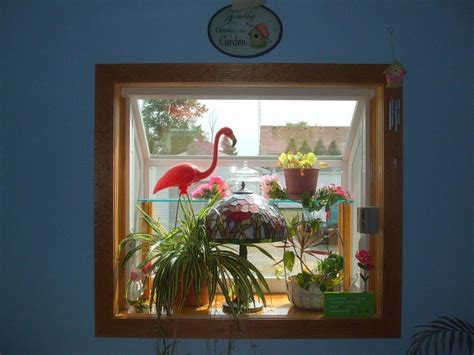 Plant Window by How To Grow Plants In A Plant Window