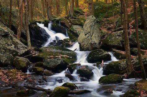 วอลเปเปอร์ : แนวนอน, น้ำตก, พืช, แม่น้ำ, ถิ่นทุรกันดาร ...