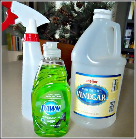 cleaning shower with vinegar shower cleaner andrea dekker