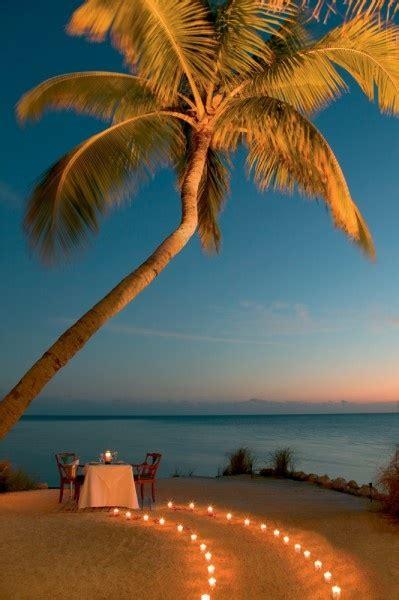 romantic beach dinner table setup xcitefunnet