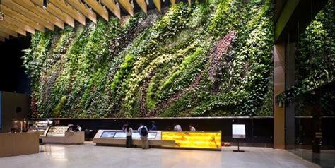 keeping cool staying green wall building indoors indoor