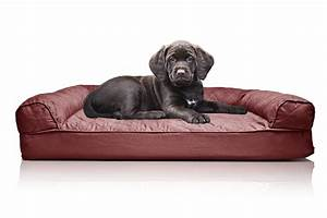 dog sofa beds for large dogs sofa ideas dog beds and costumes With best large dog bed review